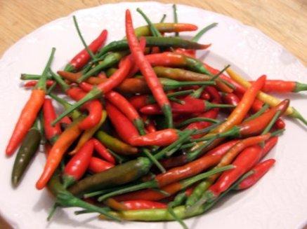 hmong-peppers.jpg