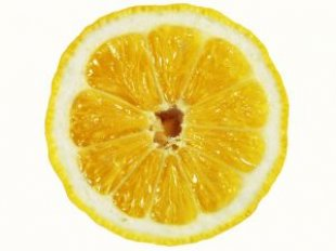 lemon_slice_lime_242187_l.jpg
