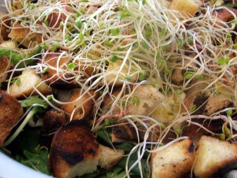 spring-salad-2